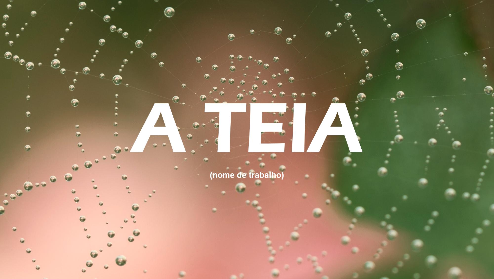 A Teia - TVI