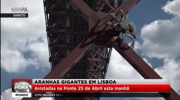 Vídeo do dia: Impressione-se com estas aranhas gigantes na Ponte 25 de Abril