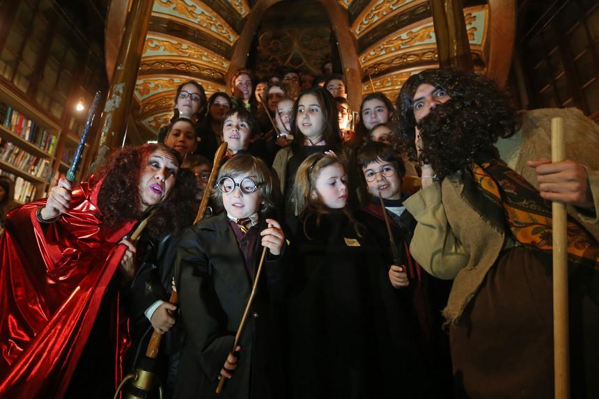 Harry Potter Livraria Lello