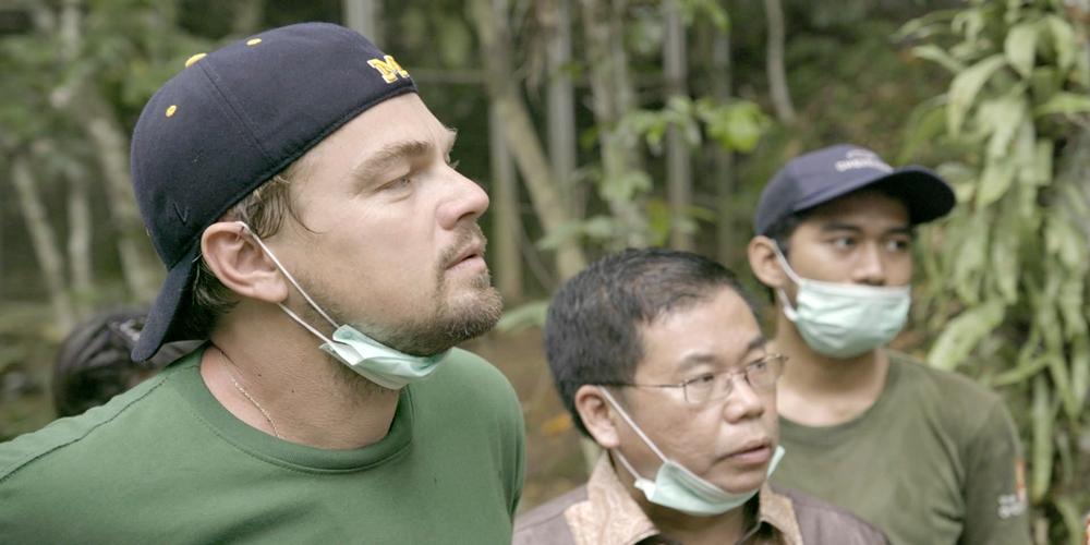 RTP1 também vai transmitir documentário de Leonardo DiCaprio