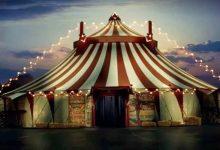 Primeira edição do «Festival Internacional de Circo do Porto» realiza-se em setembro