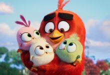 TVCine estreia em exclusivo «AngryBird 2: O Filme»